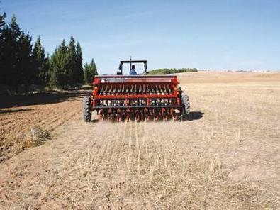 Maghreb: la baisse de la pluviométrie menace la saison agricole   CIHEAM Press Review   Scoop.it