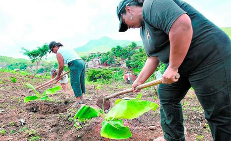 Mujeres campesinas piden acceso a préstamos y tierras | Genera Igualdad | Scoop.it