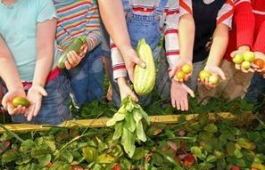 USDA Makes Grants Available for Farm to School Programs - Food Safety News | School Kitchen Gardens | Scoop.it