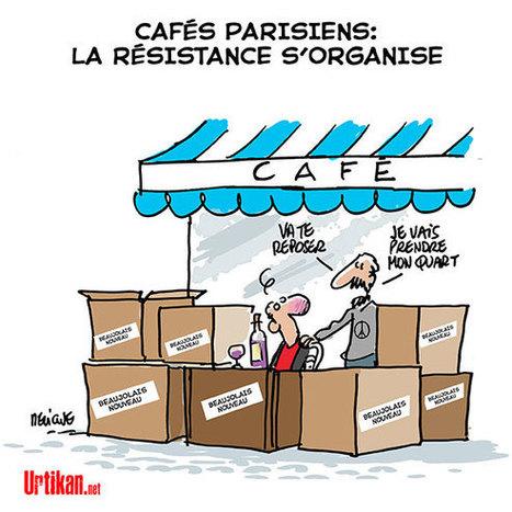 #JeSuisEnTerrasse | Dessinateurs de presse | Scoop.it