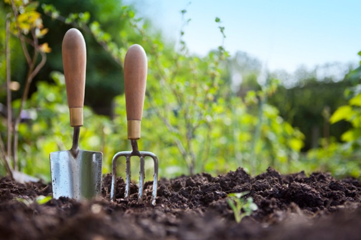 Need gardening help? Check out these apps | Garden apps for mobile devices | Scoop.it