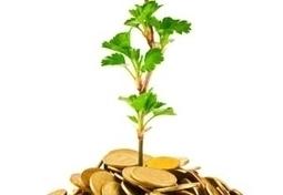 Crowdfunding The Future - Yahoo!7 News | CrowdFunnding | Scoop.it
