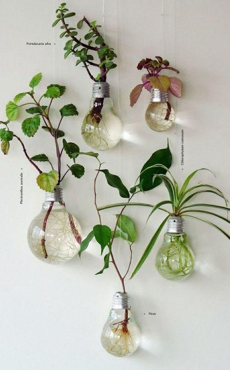 Inspiration couleur – le vert, une couleur rafraichissante – Cocon de décoration: le blog | Décoration | Scoop.it