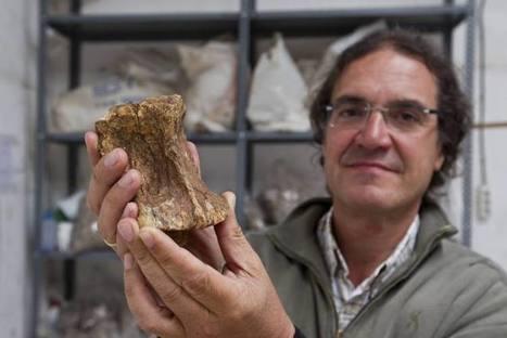 Un hogar de hace 45.000 años centra el interés de los arqueólogos en La Garma   Arqueología, Historia Antigua y Medieval - Archeology, Ancient and Medieval History byTerrae Antiqvae (Blogs)   Scoop.it