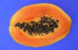 Papaya Facial Treatments for Healthy Skin | Superfood Profiles | Skin Care in the News | Scoop.it