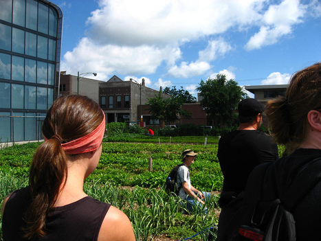 Why Conservatives Should Care About Urban Farming | Vertical Farm - Food Factory | Scoop.it