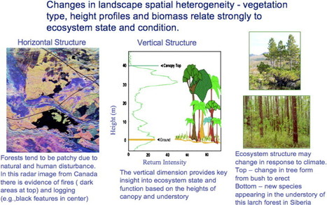 Characterizing 3D vegetation structure from space: Mission requirements | Remote Sensing - Vegetation Classification & Condition | Scoop.it