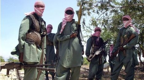 Al-Shabab 'retakes' key Somalia port city of Merca - BBC News | Maritime security | Scoop.it