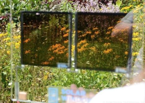Super Efficient Transparent Solar Cells Could Turn Windows into Clean Energy Generators   Cool Future Technologies   Scoop.it