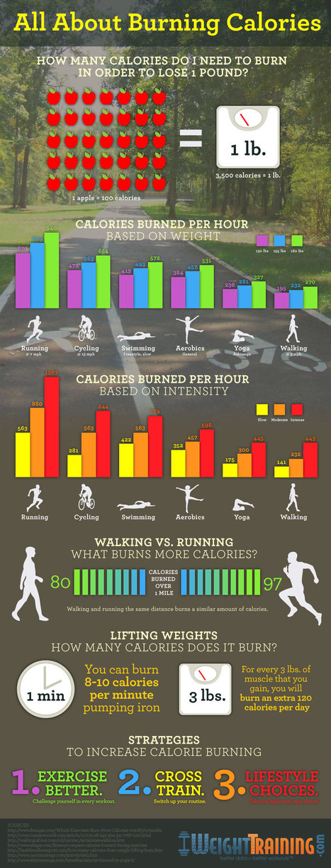All About Burning Calories Infographic | Women's fitness | Scoop.it