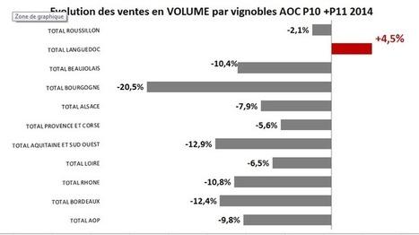 Un champion mondial de poids: Les #vins du #Languedoc, vedettes des Foires aux Vins 2014 | Vos Clés de la Cave | Scoop.it