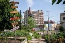 L'agriculture urbaine à Détroit : de la rouille à la terre | Développement social et culturel de territoires | Scoop.it
