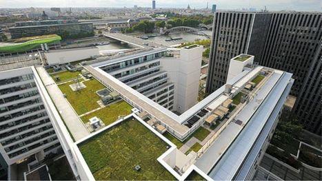 Des poules et des potagers sur les toits de la RATP | Agriculture urbaine et rooftop | Scoop.it