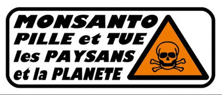 25 mai: SITTING ANTI MONSANTO / Toulouse | # Uzac chien  indigné | Scoop.it