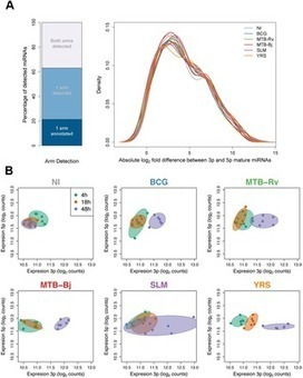 Bacterial Infection Drives the Expression Dynamics of microRNAs and Their isomiRs | Tools and tips for scientific tinkers and tailors | Scoop.it