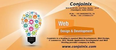 Conjoinix - Software Development Outsourcing in India -... | Facebook | Software Development India | Scoop.it