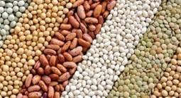 El mercado de granos de #Argentina será controlado por la Comisión Nacional de Valores | Agroindustria Sostenible | Scoop.it