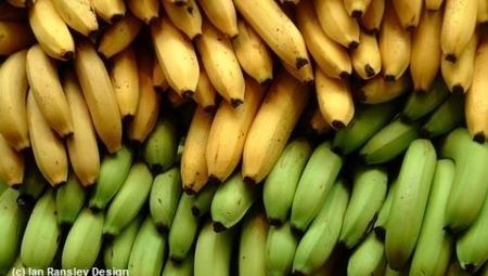 Ces bananes au goût de fongicide | Sécurité sanitaire des aliments | Scoop.it