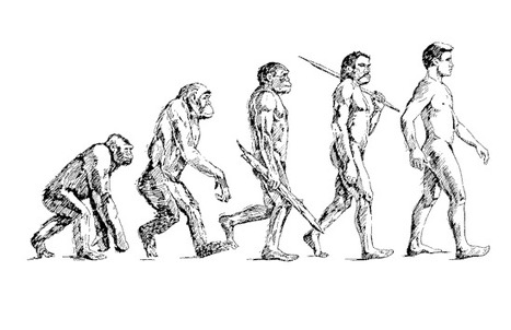 Evolution: A Game of Chance | Observations | Science Sushi, Scientific American Blog Network | anti dogmanti | Scoop.it