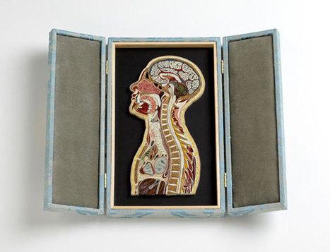 Juxtapoz Magazine - Tissue Series | Illustration | Art World. | Scoop.it