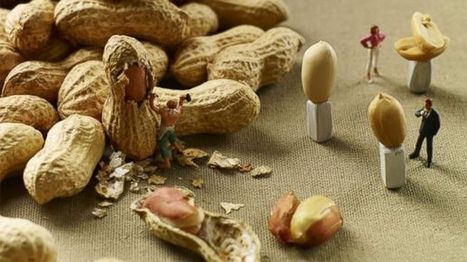 Into the World of Miniature Food Photography | photography | Scoop.it