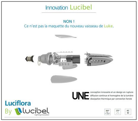 Innovation Lucibel: La Luciflora ! | Infos Energie | Scoop.it