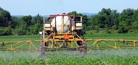 Alimentation : comment éviter les pesticides ? | ECONOMIES LOCALES VIVANTES | Scoop.it