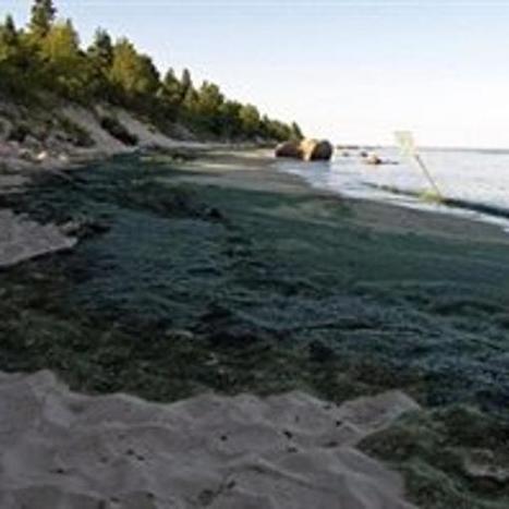 [Canada] La pollution du milieu agricole menace le lac Winnipeg   Autres Vérités   Scoop.it