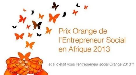Troisième édition du Prix Orange de l'Entrepreneur Social en Afrique | Africa & Technologies | Scoop.it