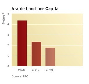 THE PRACTICALITY OF AGRICULTURE INVESTMENT | Agricultural Investments | Food security | Scoop.it
