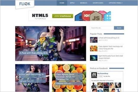 Flick - A Media Oriented WordPress Theme - WP Daily Themes | Free & Premium WordPress Themes | Scoop.it