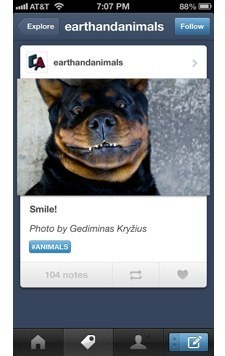 Tumblr iOS app updated, now completely native   TUAW - The ...   Anything Mobile   Scoop.it