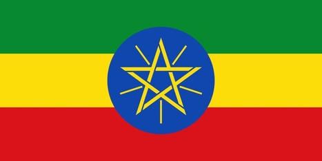 EFF asks court to let American sue Ethiopia for hacking his computer and rounding up his friends | Rights & Liberties | Scoop.it