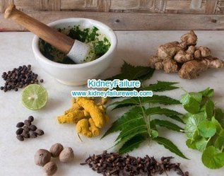 Healthy #Herbs That Will Help #Kidney Function-Kidney Failure | Limitless learning Universe | Scoop.it