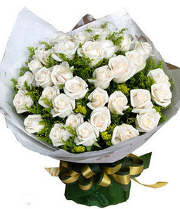 What Is The Best Flower to Give On Your First Date?   lifestyle KevinYE   Scoop.it