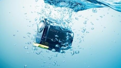 Com GoPro no bico, pelicano órfão aprende a pescar sozinho pela 1ª vez | tecnologia s sustentabilidade | Scoop.it
