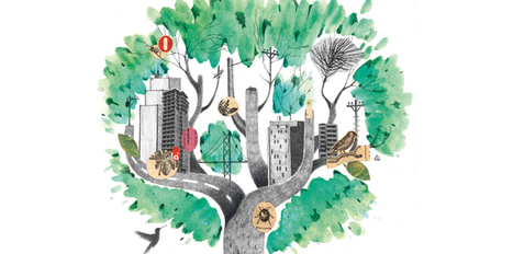 Urban Infrastructure: What Would Nature Do? | Biomimicry | Scoop.it