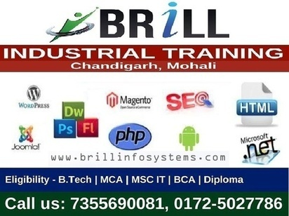 Industrial Training in Chandigarh – Important To Become Professional | Brill Infosystems | Scoop.it