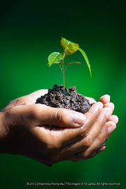 Lead Nurturing and Your Business: 4 Reasons Why It Works | j+ Media Solutions | Scoop.it
