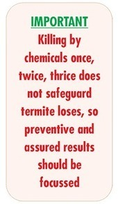 Termite Prevention and control | Subterranean Termites treatment methods | Agrochemical Products | Scoop.it