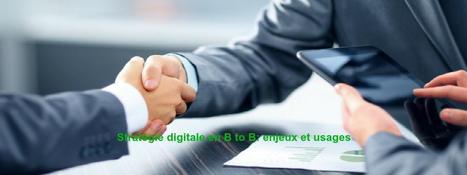 Stratégie digitale B to B: enjeux et usages! - Jacques Tang | Enseignement Supérieur & Innovation | Scoop.it