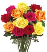 Florist | Flower Delivery - Send Flowers Online... | CLOVER ENTERPRISES ''THE ENTERTAINMENT OF CHOICE'' | Scoop.it