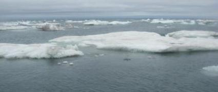 Huge waves measured for first time in Arctic Ocean   Sustain Our Earth   Scoop.it