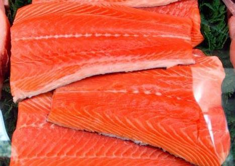 U.S. clears genetically modified salmon for human consumption | Broad Canvas | Scoop.it