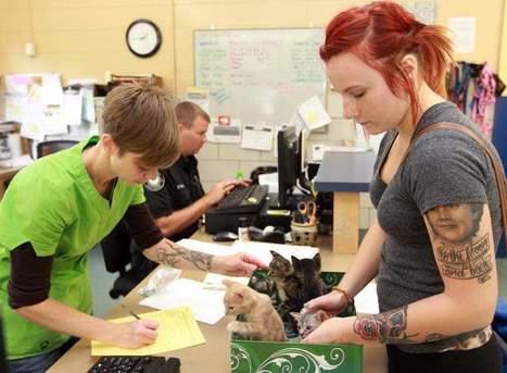 Officials debate role of an animal shelter - Cincinnati.com   Animals R Us   Scoop.it