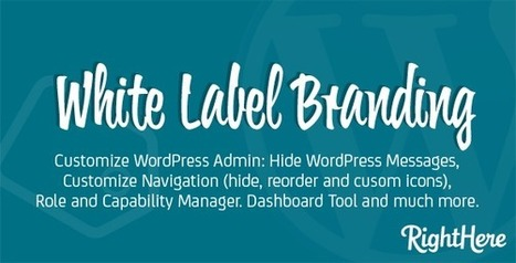 How To: Customise and Whitelabel the WordPress Admin Dashboard | Online Marketing Resources | Scoop.it