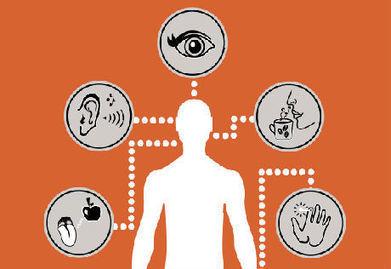Le marketing sensoriel au service de la relation client : un art à ... - Dynamique Entrepreneuriale   Médias   Scoop.it