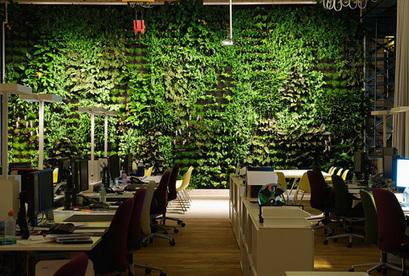Wonderwall - Der vertikale Garten von Creaplant. | sustainable architecture, Green Cities | Scoop.it