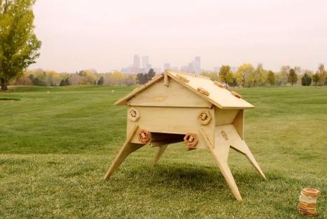 Peut-on sauver les abeilles grâce à l'open-source ? | WE DEMAIN. Une revue, un site, une communauté pour changer d'époque | Scoop.it