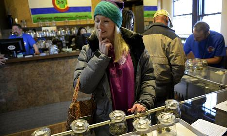 Going to pot: legalised cannabis edges nearer in west after US states end ban | What Every Drug User and Drinker Should Know About Law | Scoop.it